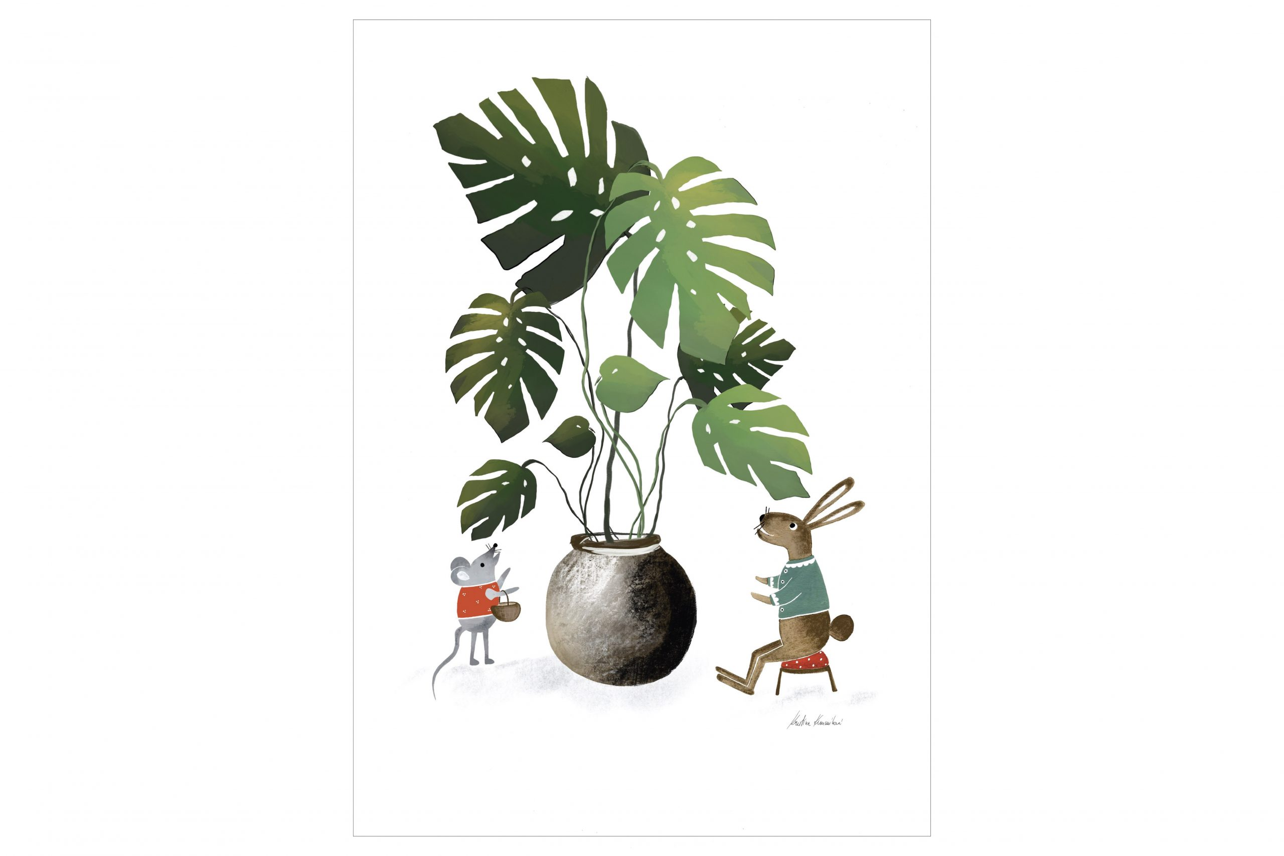 monstera friends