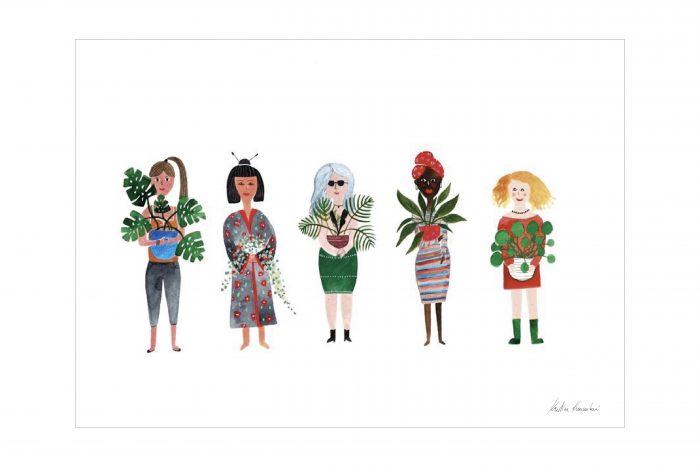 plant cultures